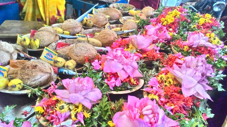 The flowers and coconut all ready to be offered to the God!