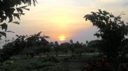The wonderful Sun